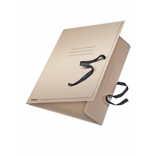 Esselte FolderSys - Carpeta de dibujo (A3, cartón), color natural