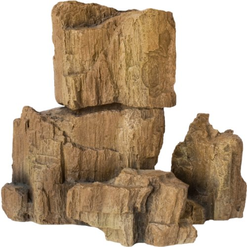 Hobby fósiles Rock