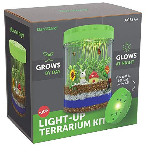 Kit Terrario Iluminado para niños con luz LED en la Tapa | Cree su propio Mini...