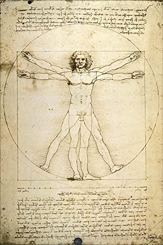 1art1 Leonardo Da Vinci - El Hombre De Vitruvio Póster (91 x 61cm)
