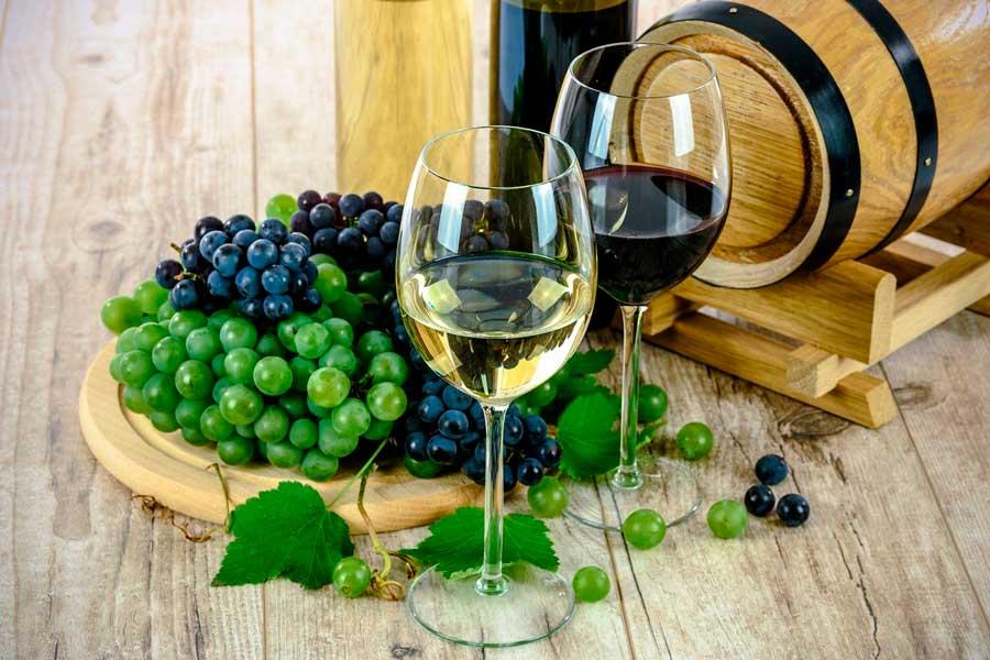 gastrofisica-vino