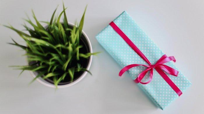 ideas-regalos-ecologicos