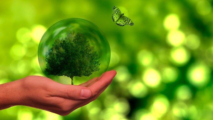 regalo-eco-comprar